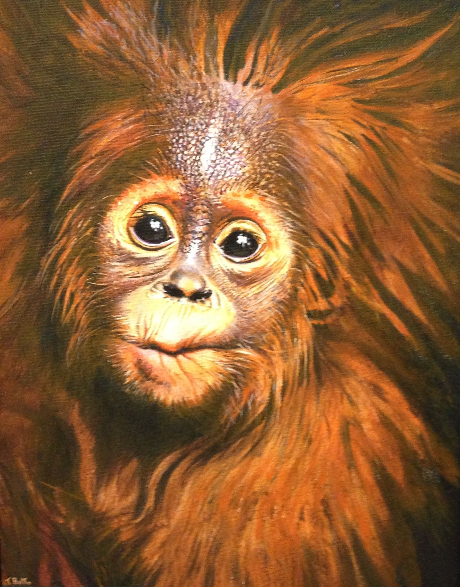 Baby Orangutan, acrylic by Tony Botto