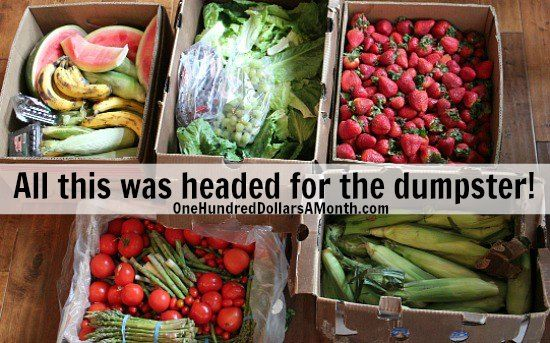 Food Waste In America Free Food Food Waste Foraging Dumpster Diving Food Waste Food A Food