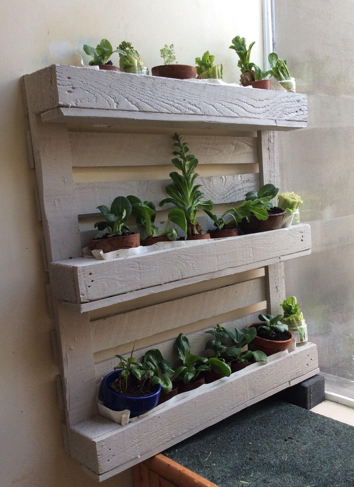 Up cycled vertical pallet planter garden pinterest for Macetero vertical pallet