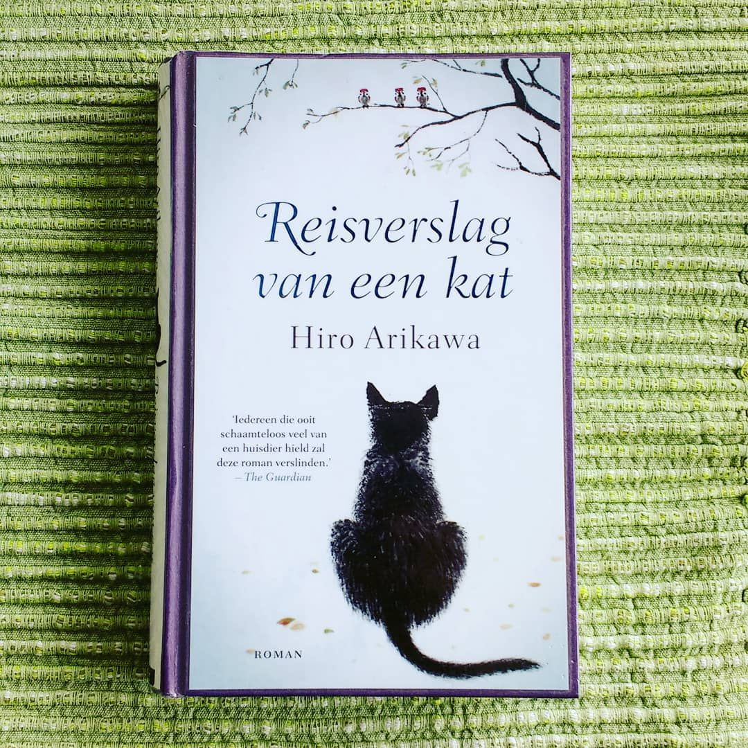 A good read 💞 about a cat who loves his adopted human so very very much 😻  #boek #book #bookworm #agoodread #livre #kat #cat #kattern #kat… | Boeken,  Katten, Roman