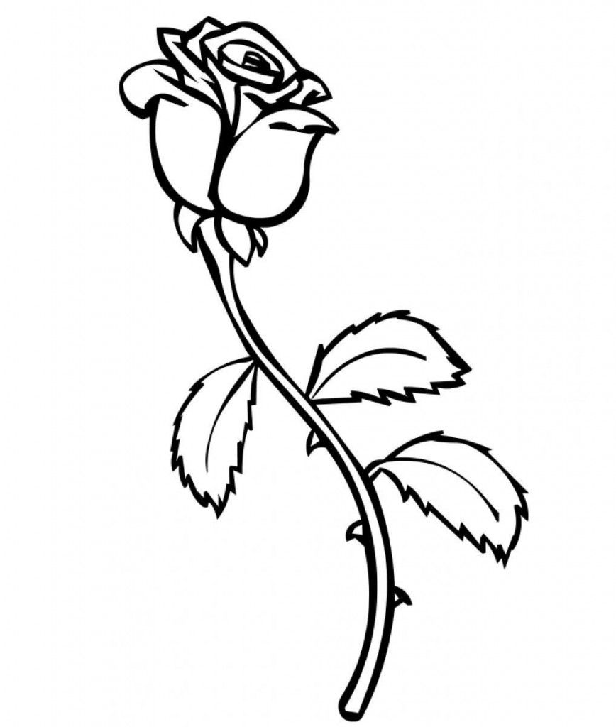 Free Printable Roses Coloring Pages For Kids | Rose, Free printable ...