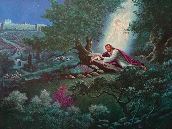 Jesus Praying Garden Gethsemane Jesus prays in the Garden of