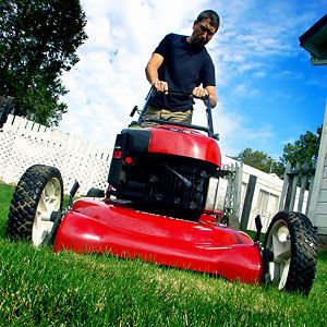 The lawn-mowing season gets going with a vengeance in early spring, and the gardening experts recommend that you cut your grass at least once...