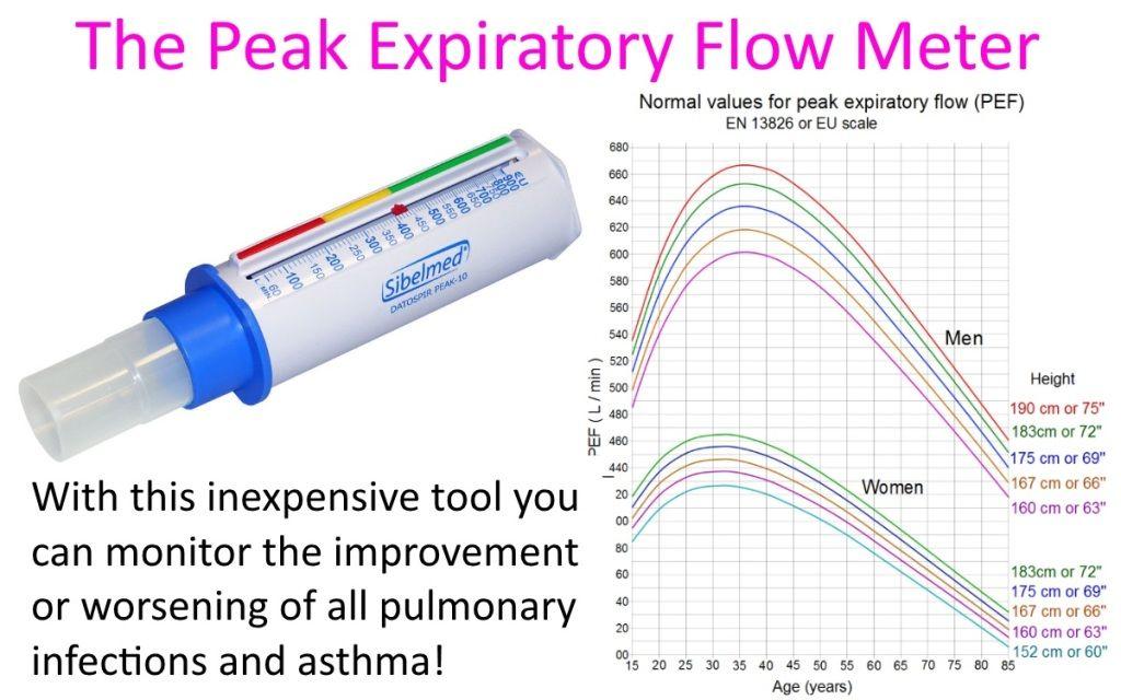 Peak Expiratory Flow Meter Acute Exacerbation Determines