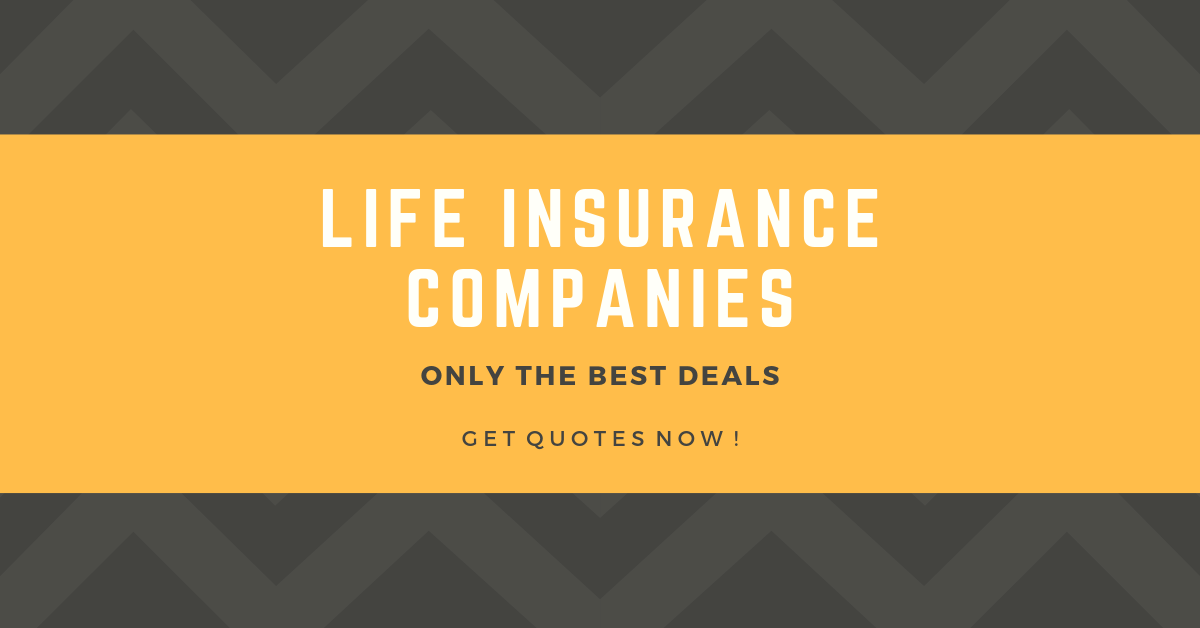 Check Life Insurance Quotes Life Insurance Quotes Life