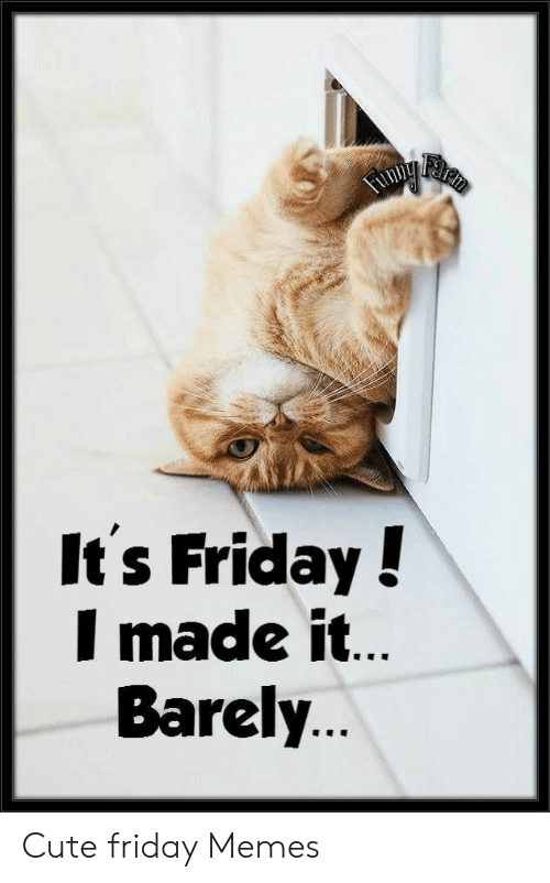 Memes About Happy Friday Funny Meme Happy Friday Meme Friday Meme Funny Friday Memes