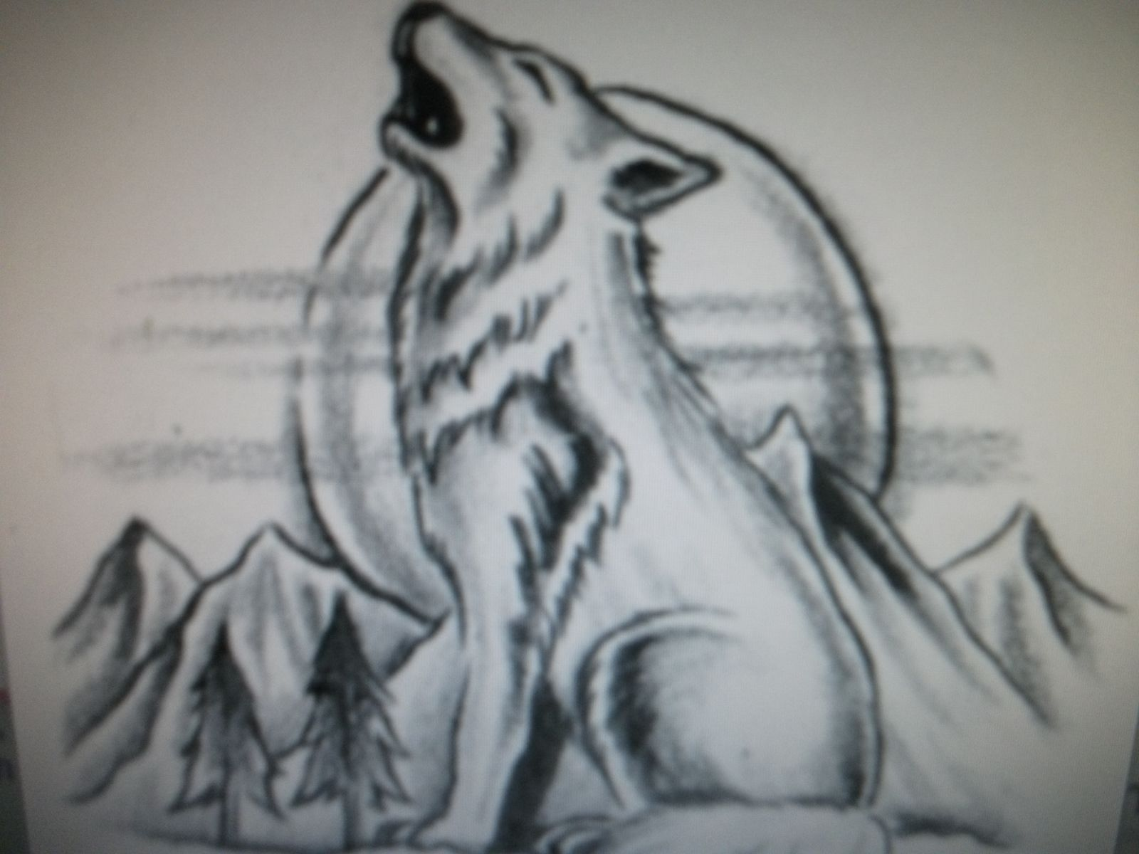 Lineart Wolf Tattoo : Drawings of wolves howling drawing ideas