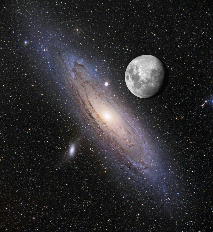 see andromeda galaxy - photo #4