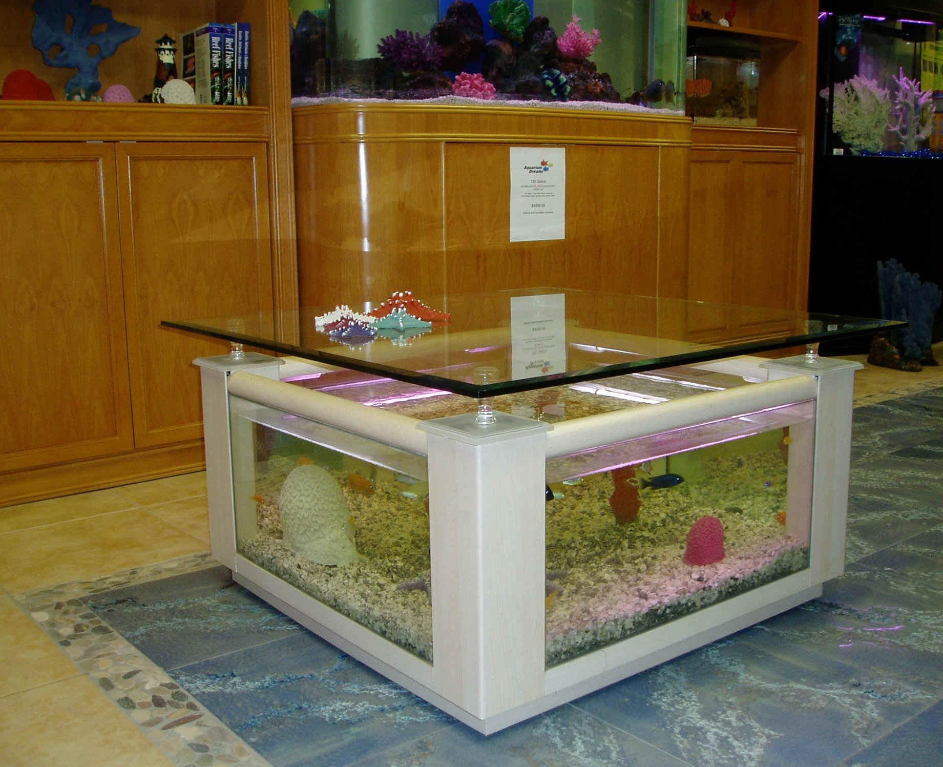 Coffee table fish aquariums aquarium ideas pinterest fish coffee table fish aquariums geotapseo Image collections
