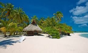 Image Result For Bungalow On Private Beach Driving To