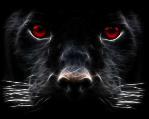 Red Eyes Panther pictures, Beast wallpaper, Black panther