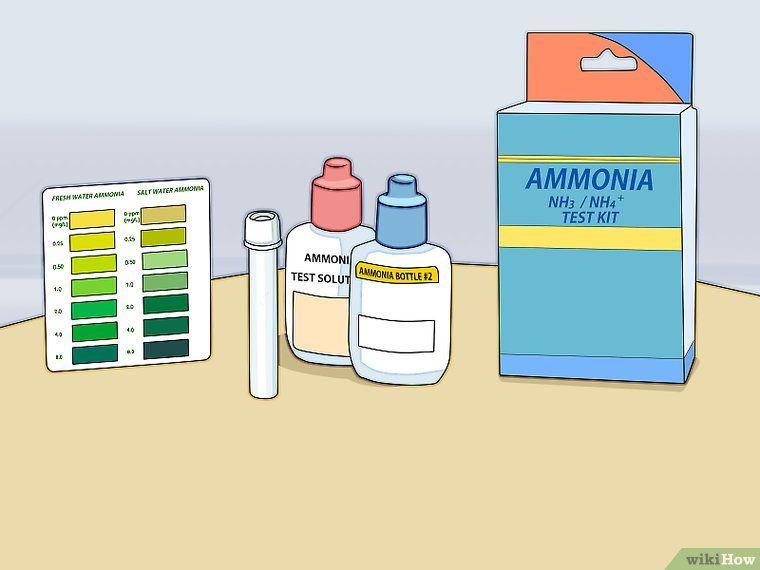 04b273ed688653a5ce5d07e59b153767 - How To Get Ammonia Out Of My Fish Tank