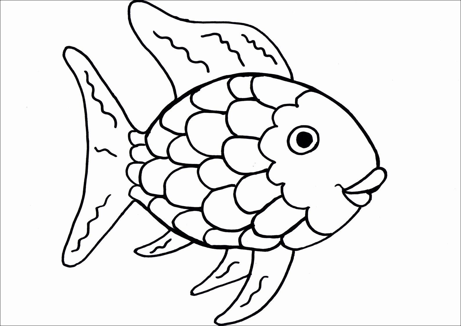 √ regenbogenfisch zum ausmalen  fischlexikon