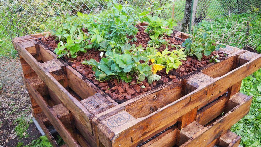 Hochbeet bauen VideoAnleitung zum Selberbauen Backyard