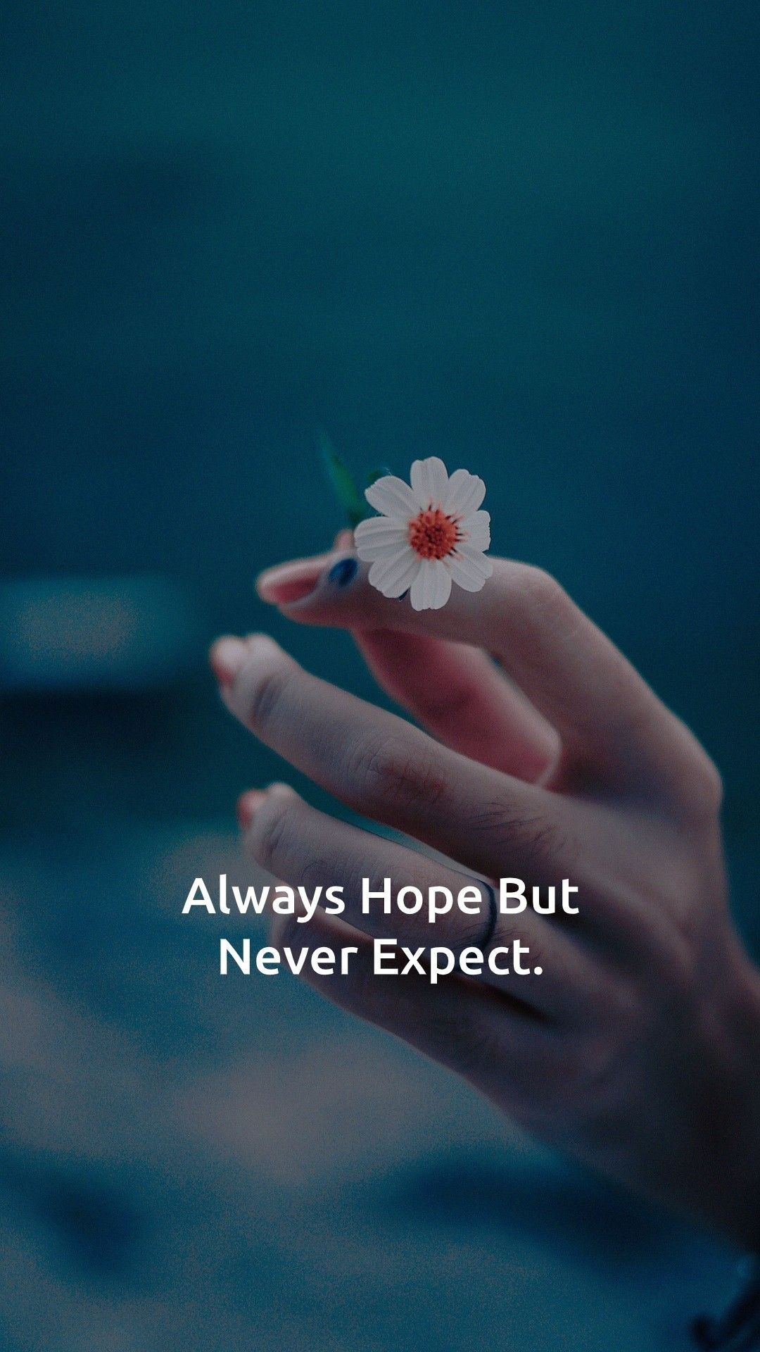 Motivational Quotes Never Expect Quotes Expectation Quotes Best Quotes App