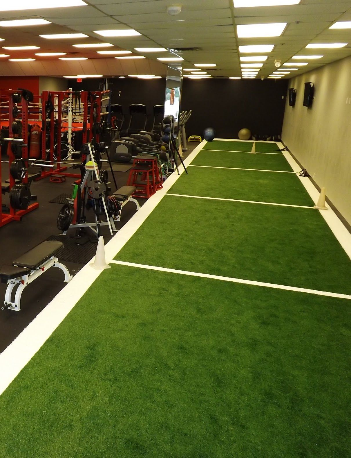 Image result for astro turf gym private gym design in gym