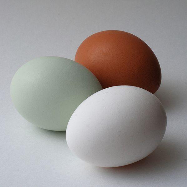 Trucos Para Saber Si Un Huevo De Gallina Está Bueno Podrido O Caducado Y Qué Significa El Código De Su Cáscara Huevos De Gallina Gallinas Huevo Para Colorear