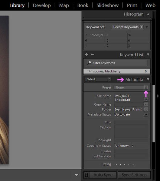 How to copyright photos in lightroom