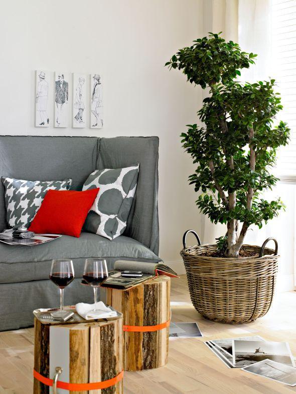 Die besten Tipps Grünpflanzen fürs Wohnzimmer home decoration