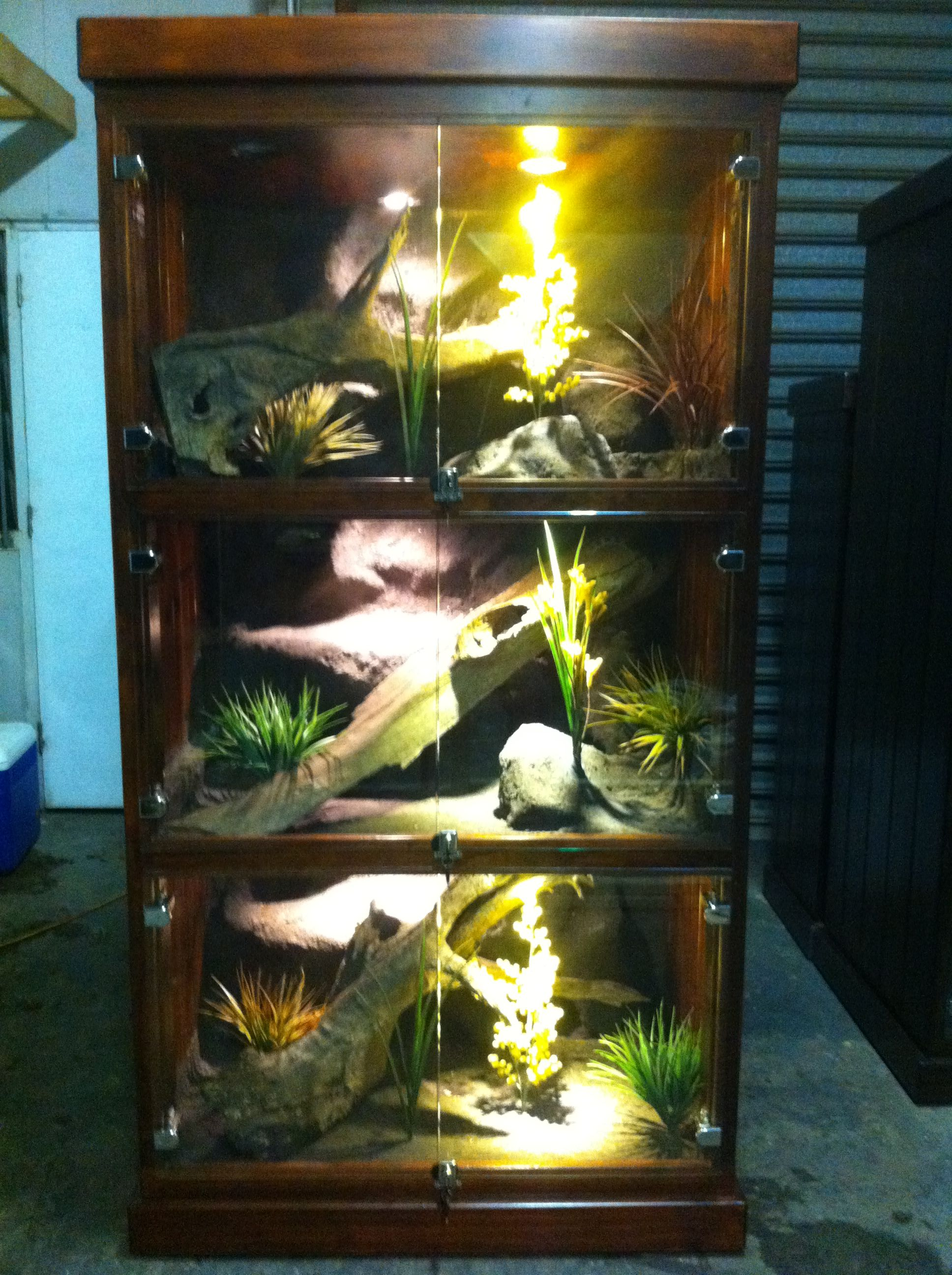Pin by myia nicole on enclosures pinterest reptiles