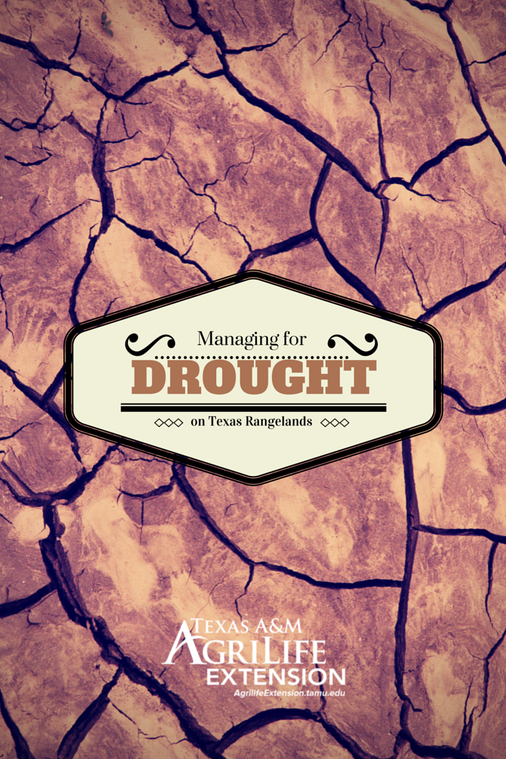 Managing for Drought on Texas Rangelands