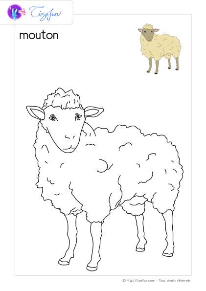 Pdf Dessin A Colorier Animaux De La Ferme A Imprimer Moose Art