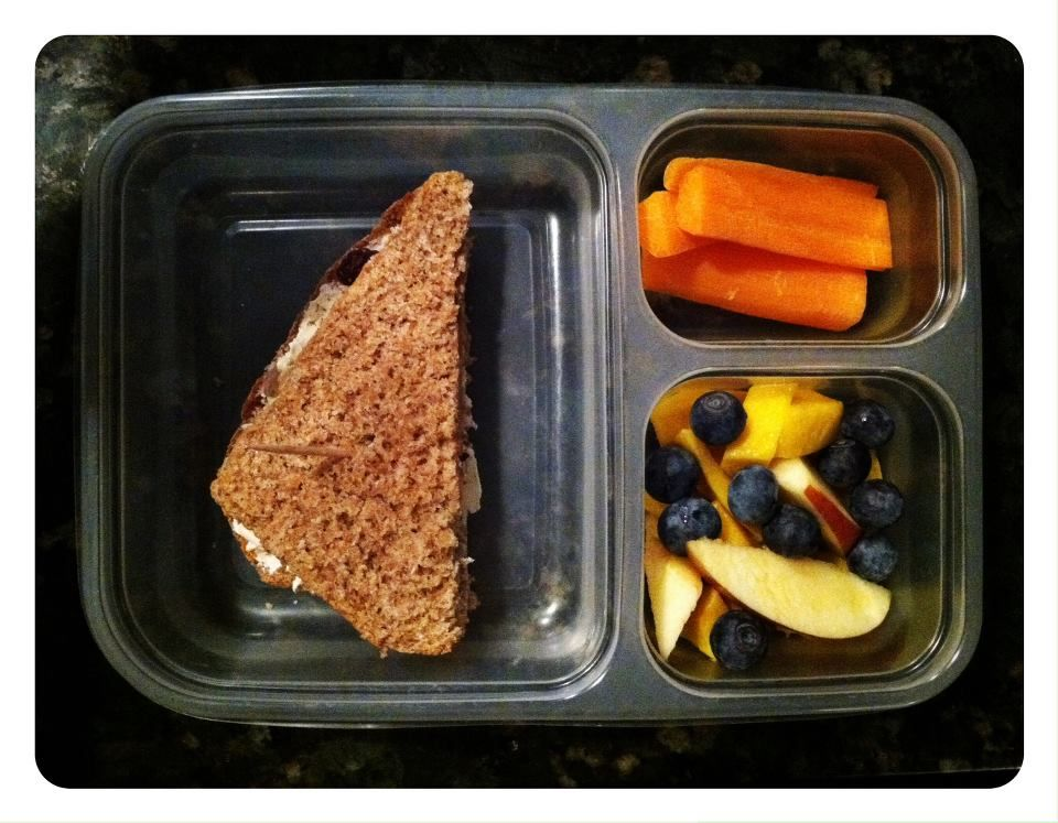 a plethora of nutritious kids lunch ideas
