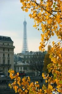 Paris Eiffel Tower at Fall
