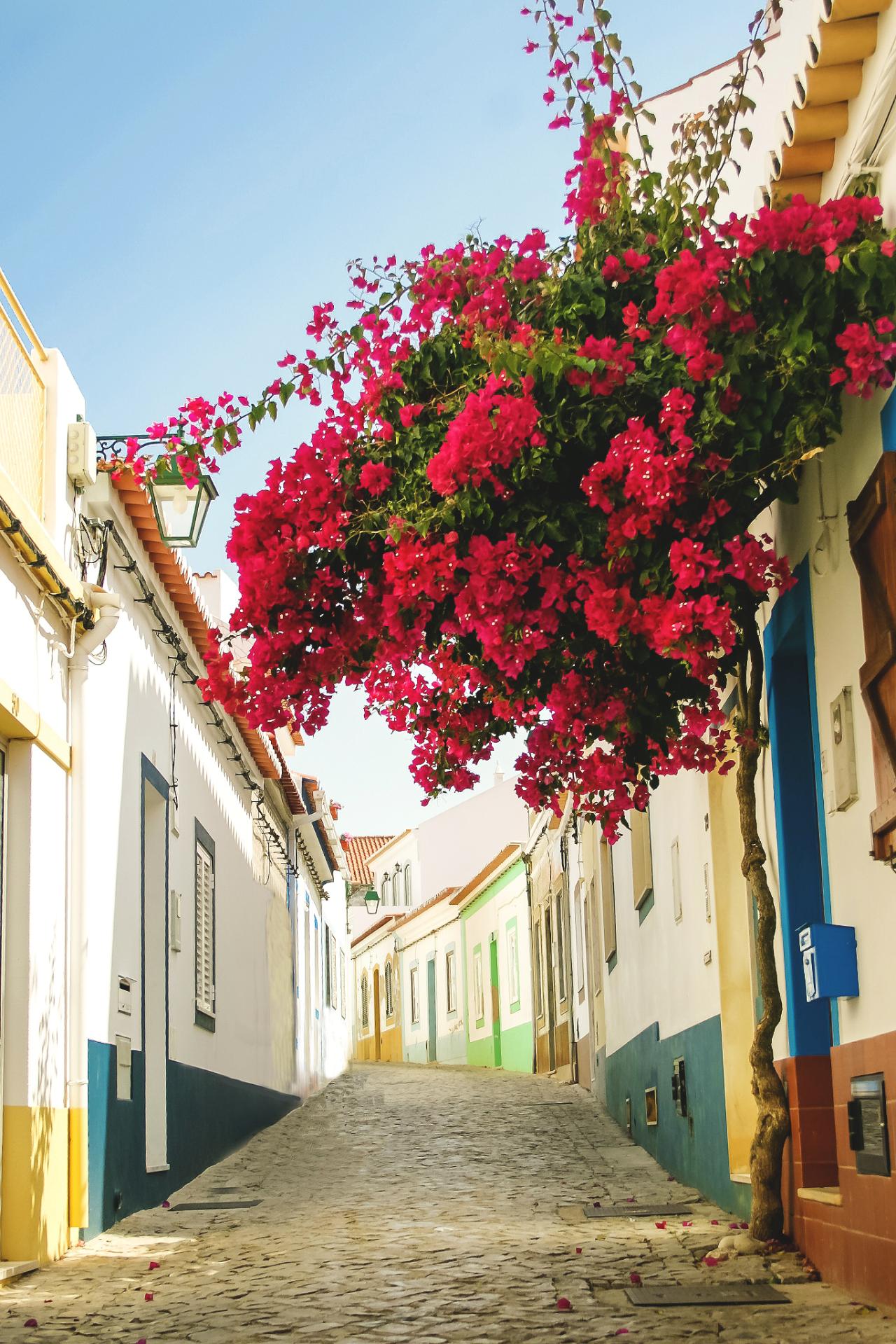 Wnderlst Faro Portugal Dominick Angstwurm Portugal Reisen Reiseziele Reisen