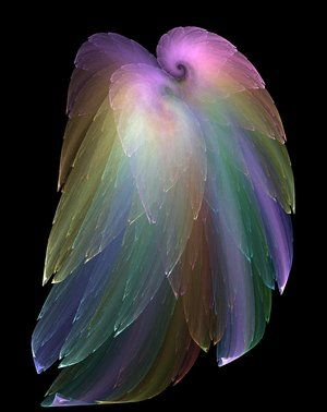 photos of feathers - Google Search