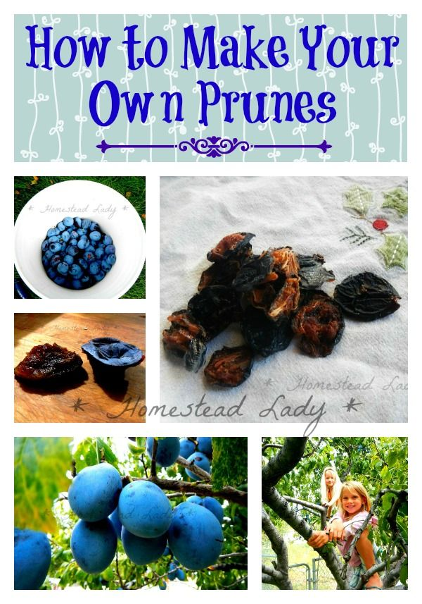 How to make camias prunes and