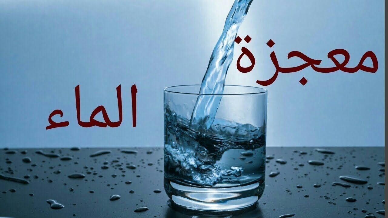 معجزه الماء و الحكمة من الوضوء وجعلنا من الماء كل شئ حى Stemless Wine Glass Wine Glass Glassware