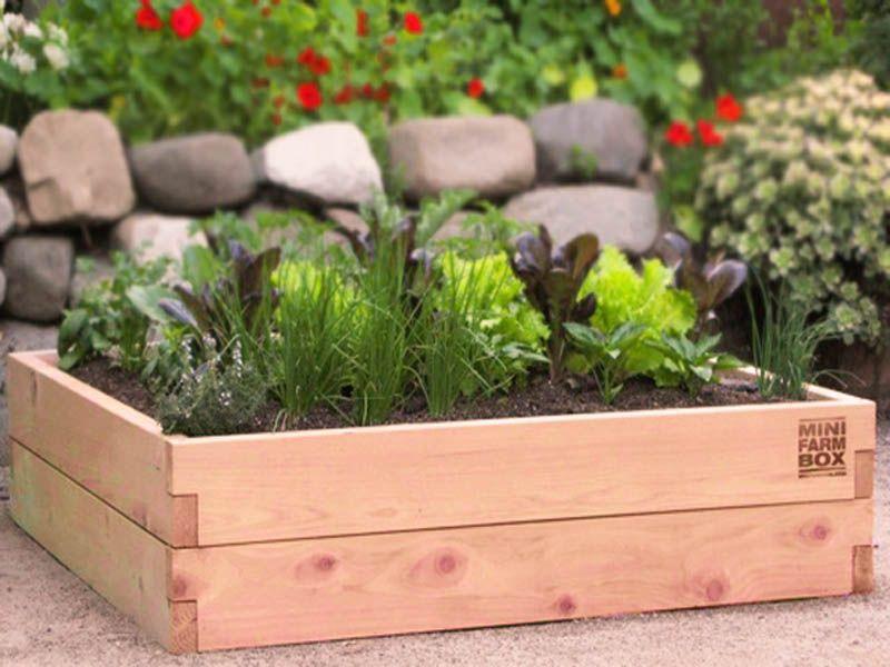 Raised Garden Bed Kits   By MinifarmBox Makes Organic Container Gardening  Easy #gardening