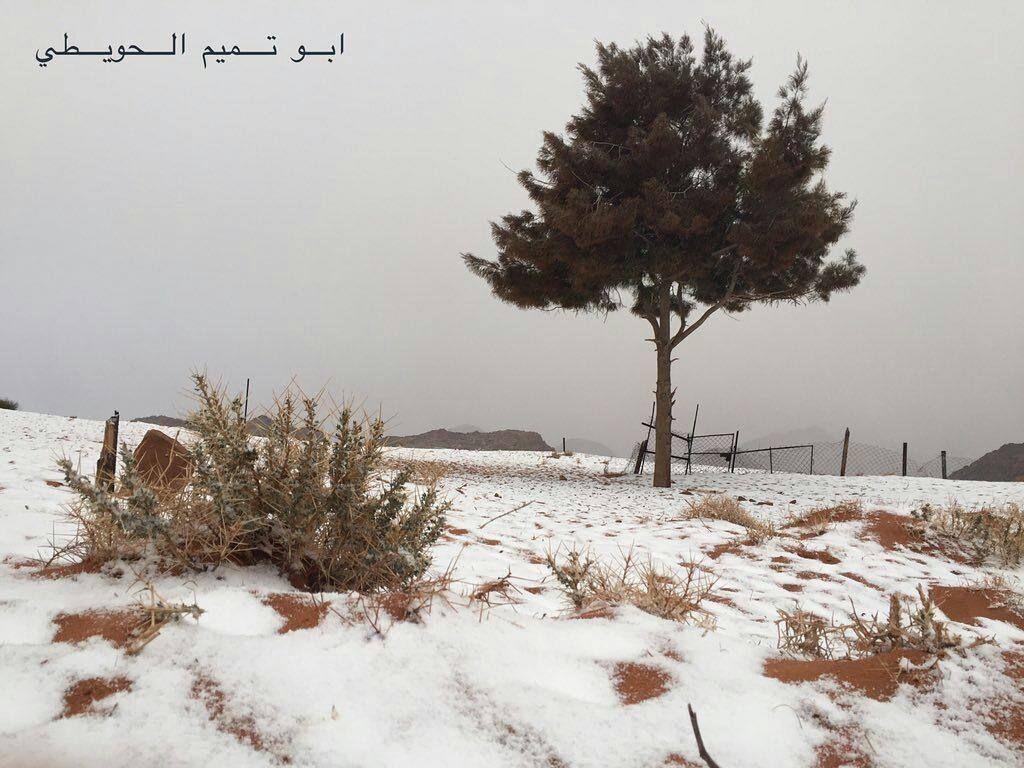 شبكة أجواء السعودية تساقط الثلوج في علقان تبوك من ابو تميم الحويطي رابطة أجواء الخليج G S Chasers Instagram Posts Instagram Photo