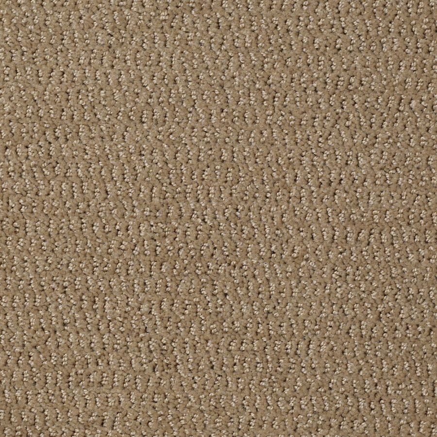 Shop Stainmaster Active Family Crusty Bread Berber Indoor Carpet