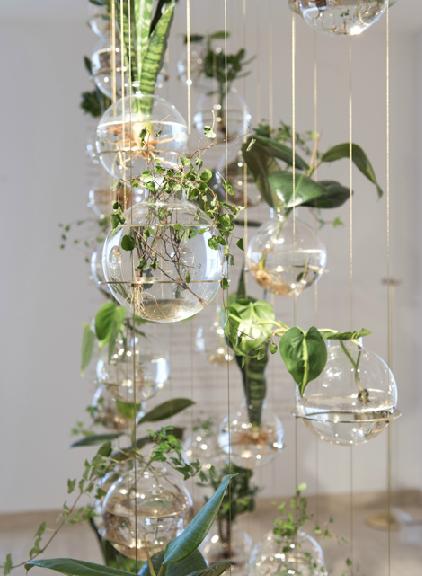 Glass hanging planters michael anastassiades green for Indoor gardening glasses