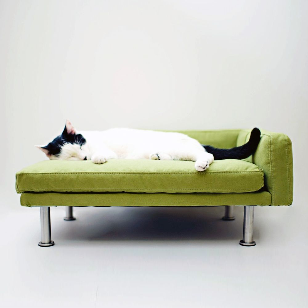 Modern Pet Chaise Lounge