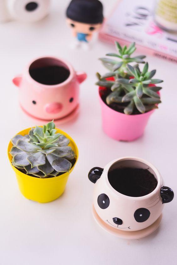 Meus novos vasos fofos em formato de porquinho e panda *-* Ficaram ainda mais lindos com essas suculentas. Tem mais detalhes e informações no blog www.omundodejess.com: