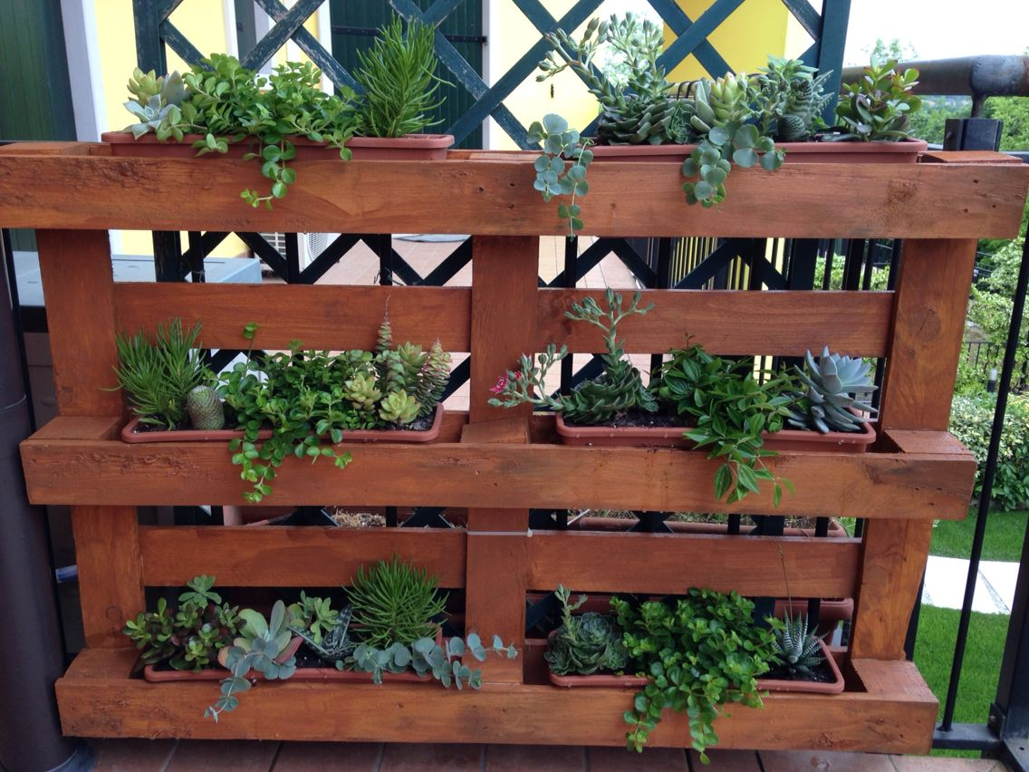 Pallet con piante grasse fai da te maseta plantas