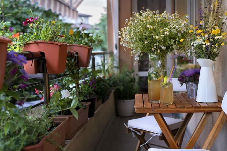 Photo of Fleurs d'automne balcon : 20 idées pour pots et jardinières