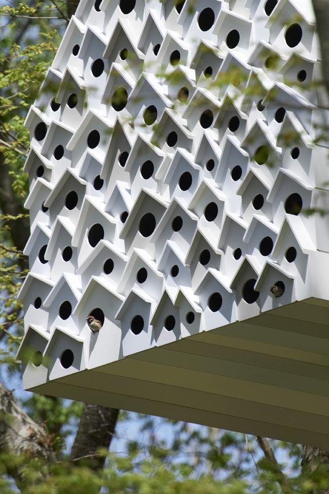 bird-apartment55 / 「鳥の集合住宅」を裏から観察できるツリーハウス