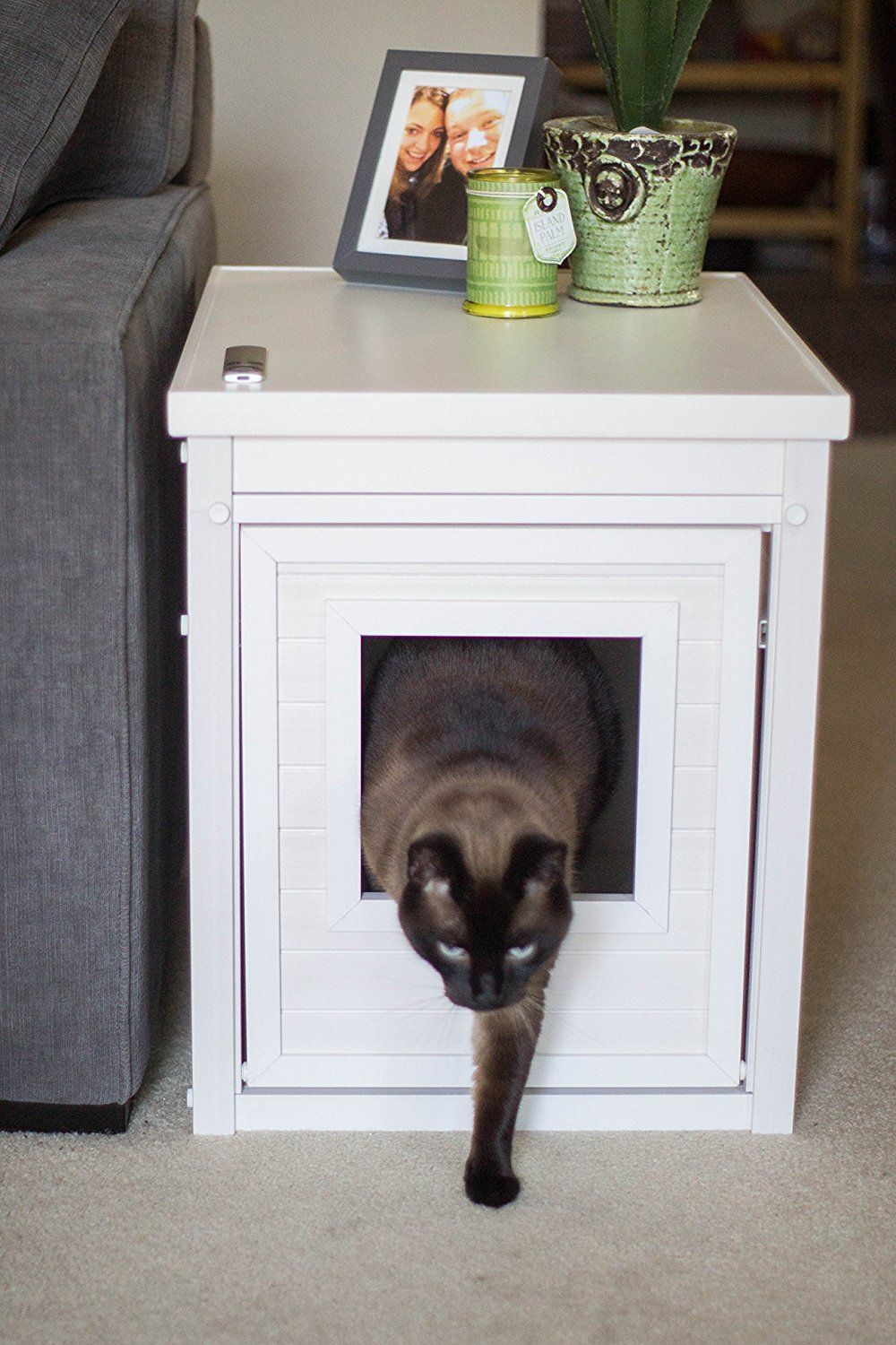 Top 5 Best Cat Litter Box Furniture for Your Kitty's