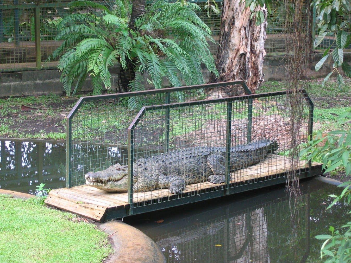 """Foto in """"Australien"""" - GoogleFotos"""