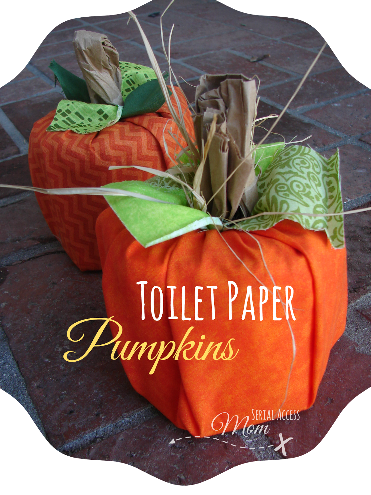 Autumn crafts toilet paper pumpkins easy and fun to for Fall craft ideas for seniors