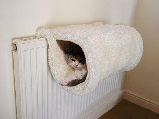 Как сделать домик для кошки своими