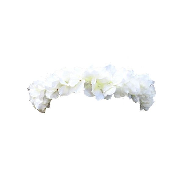 Transparent Flower Crowns Transparent Flowers Flower Crown Flowers