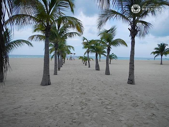 Isla Pasion Cozumel Palm Tree Aisle Via Destinationweddingsguide