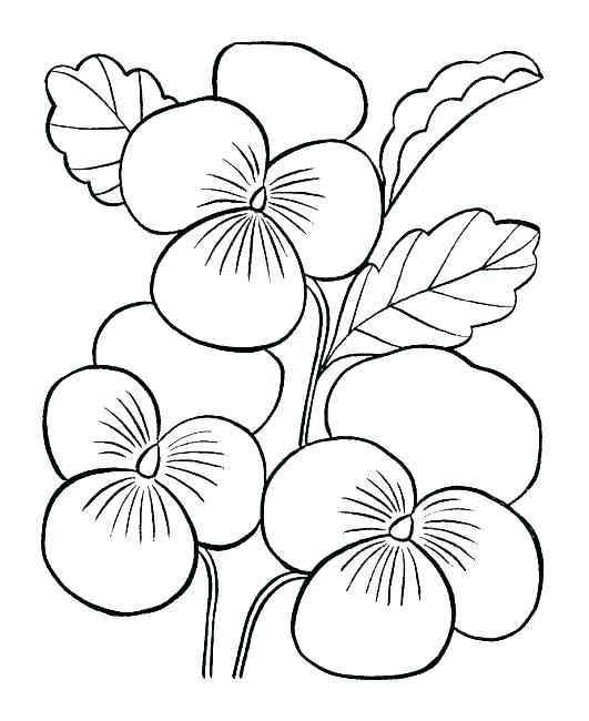 Coloring Book Pages Flowers Easy Printable Flower Girl U2013 Rhpinterest: Coloring Pages Flowers Easy At Baymontmadison.com