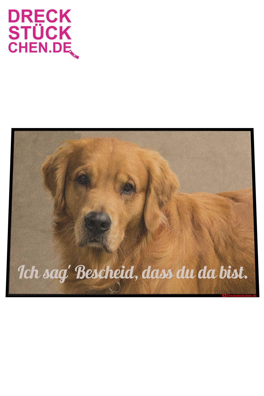 Fotofussmatte Mit Ihrem Haustier Haustiere Tiere Hunde