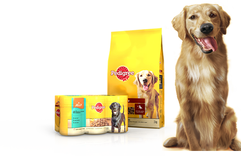 Pedigree Dog Food may be Endangering your Pet, yet no Recall Despite over 300 Complaints from Customers